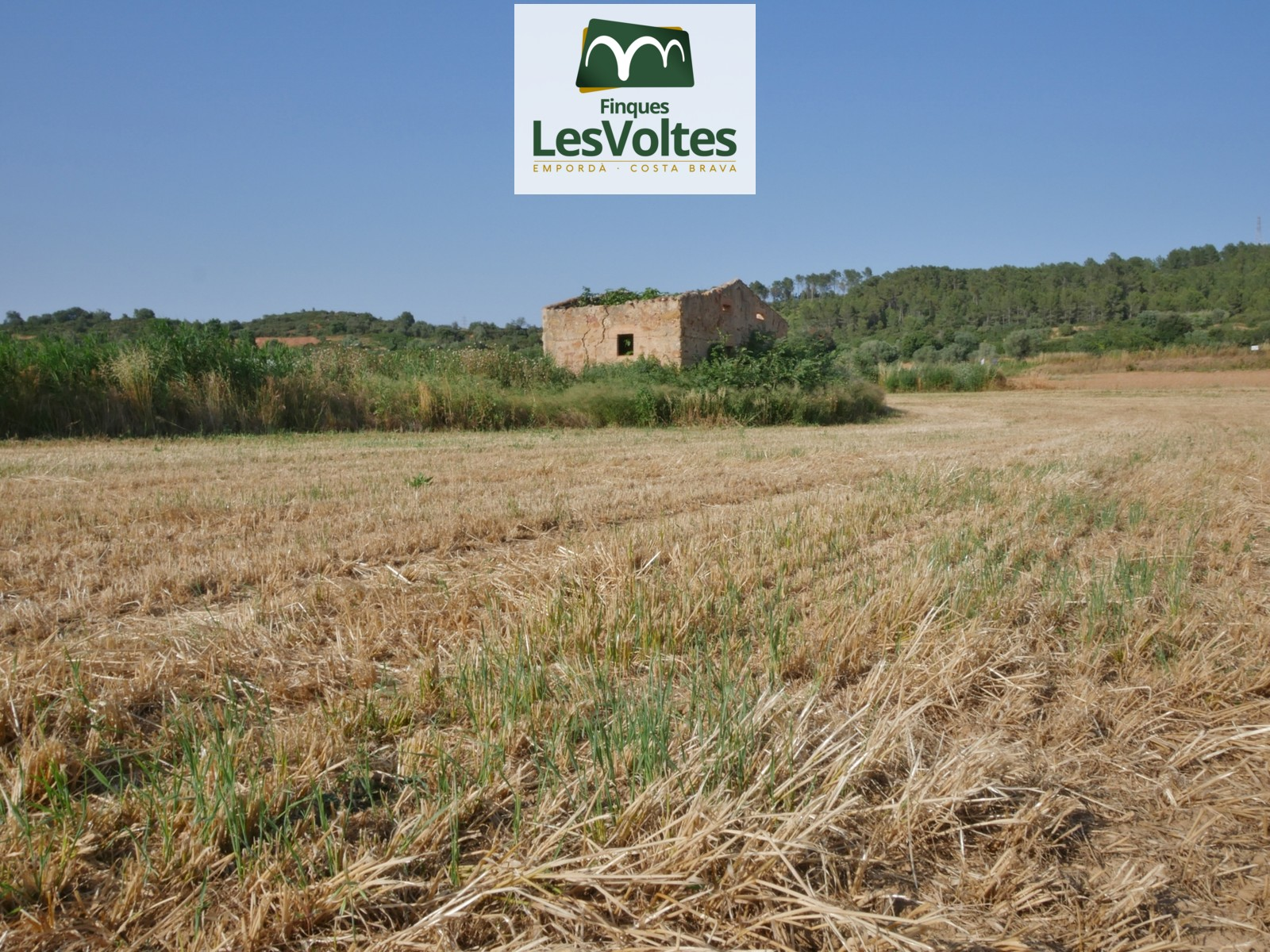 RUSTIC LAND OF 32.000 M2 WITH STONE CONSTRUCTION OF 40 M2. FOR SALE IN ULLASTRET.